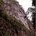聳立的山壁很壯觀,但...喵的小相機拍不出來