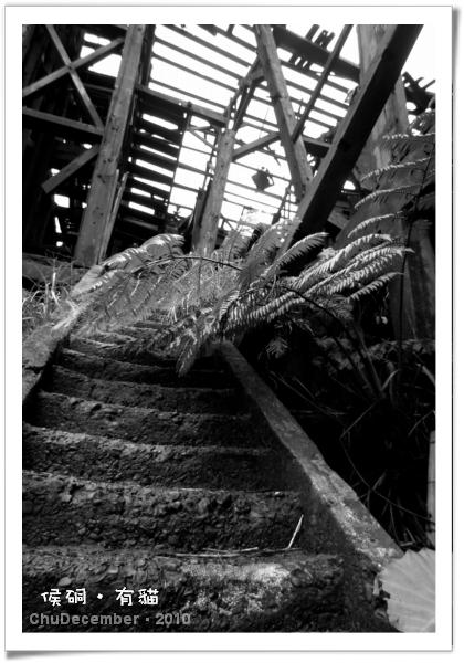 已成廢墟的礦場