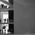 MoMA總有讓人驚喜的小空間