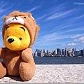 幸福的維尼在曬太陽