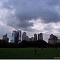 可以看到市中心的Sheep Meadow