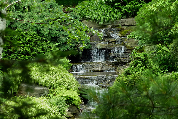 小溪水.jpg