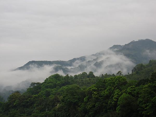 五峰雲霧一.jpg