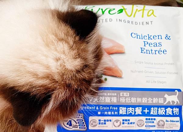 Cat_201208_7.jpg