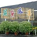 2011新社花海、花毯節