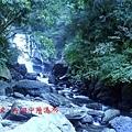 烏來/內洞國家森林
