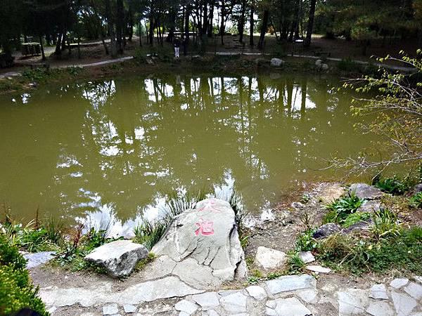 福壽山農場~天池