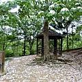 2012東勢林場