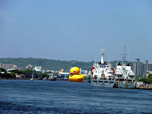 黃色小鴨游高雄