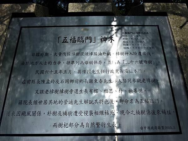 石岡/五福臨門神木