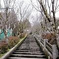 太平山中央階梯