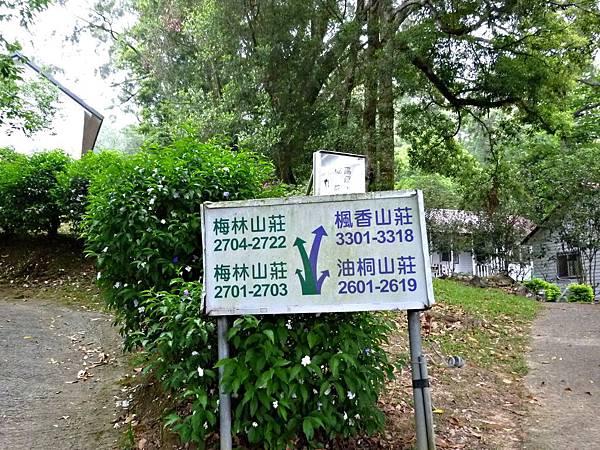 2014東勢林場
