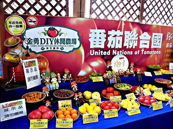 關西/金勇DIY蕃茄農場