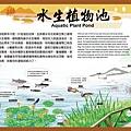 水生植物池.jpg