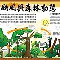 颱風與森林動態.jpg