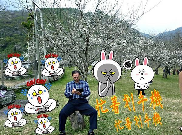 2015-02-14-11-04-10_deco.jpg
