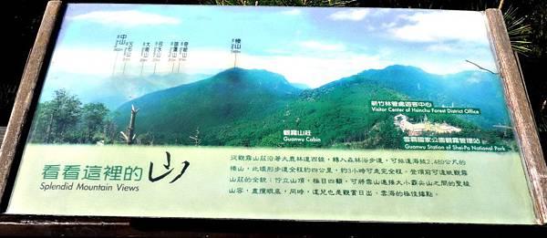 觀霧/雲霧步道