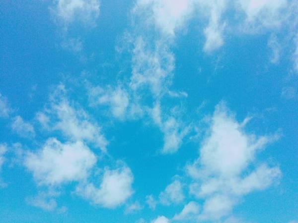 2015-05-18 10.49.04.jpg