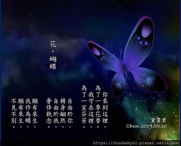 chunbaby62花。蝴蝶.jpg