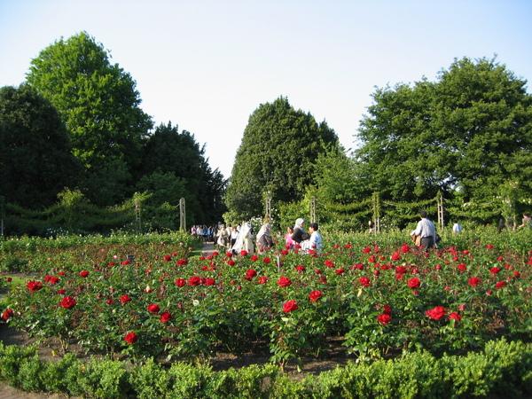 皇后瑪莉公園