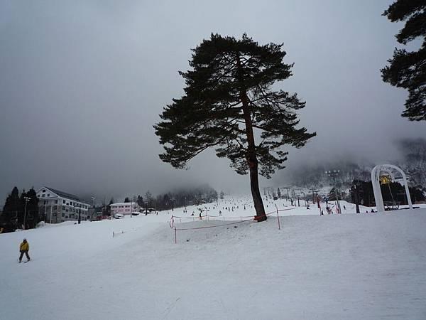 白馬五龍雪場