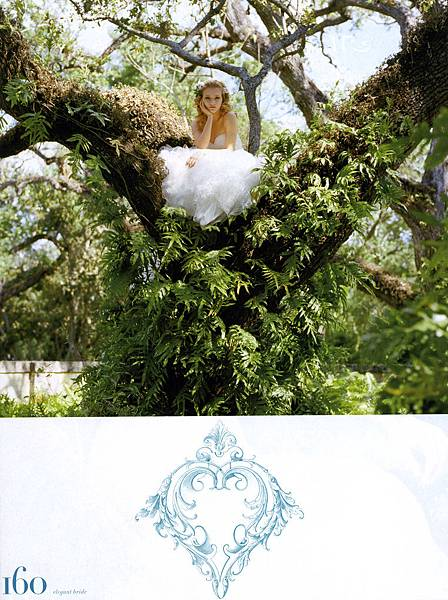 Amy Lin-Wedding-Elegant Bride summer2007014.jpg