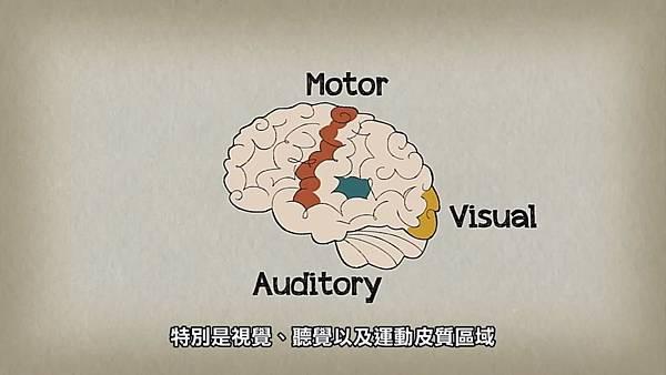 音樂如何改變你的大腦03.jpg