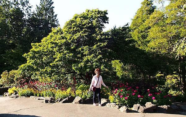 伊莉莎白公園 (1).JPG