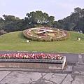 141229青年公園花鐘