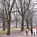 Tivoli Park傘