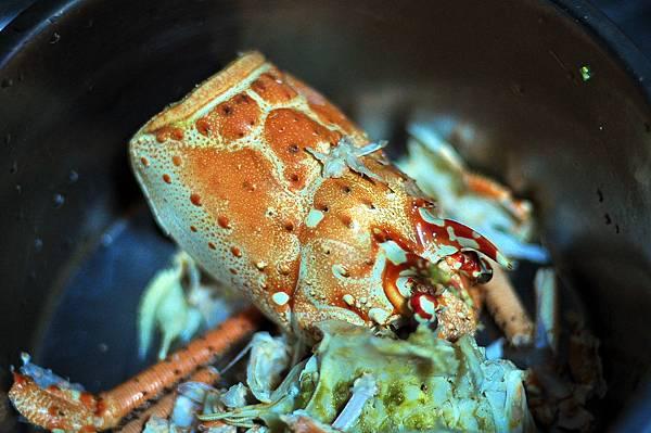 宴席帶回龍蝦頭