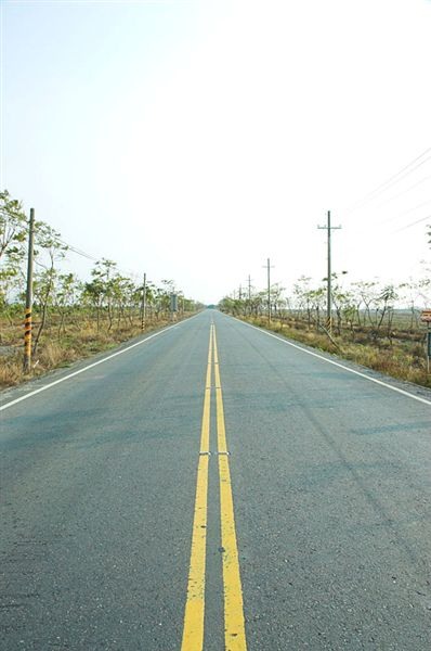 平直的公路