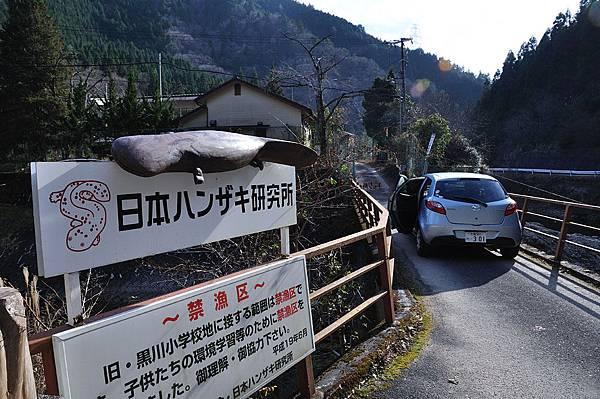 大山椒魚研究所1.jpg