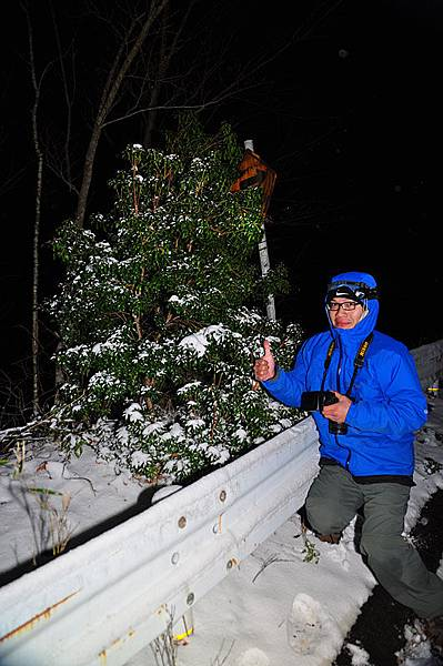 雪中亂拍XD