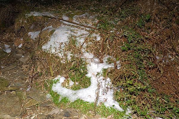 地上都結冰了...