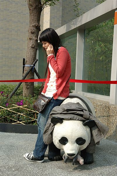 在講電話的愷愷和她的坐騎〝黑眼白熊〞