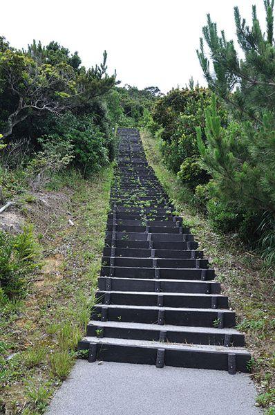 看到這個階梯...