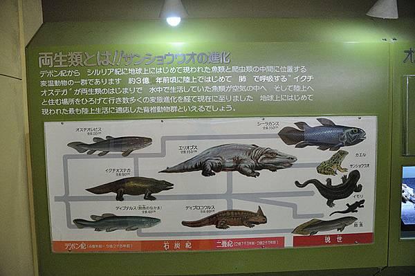 山椒魚教育展示中心