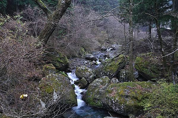 附近的溪流