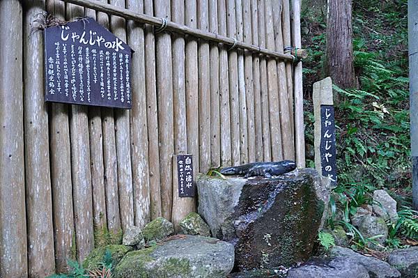 山椒魚造型的湧泉