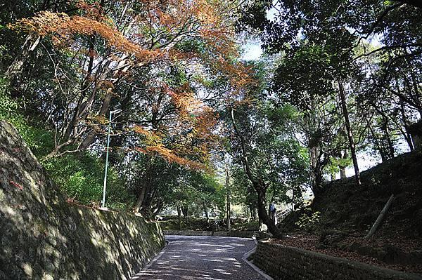 上野公園一景