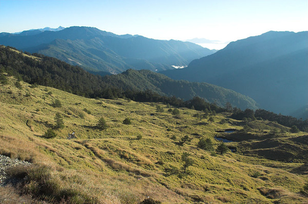 高山草原的早晨