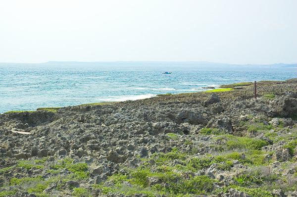 海邊的珊瑚礁岸