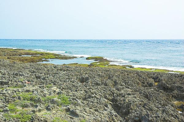 大片的珊瑚礁岸