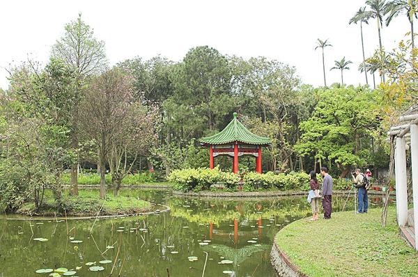 植物園內一景
