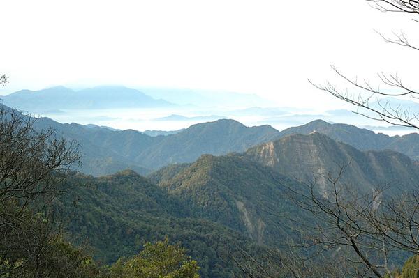 上山時的風景