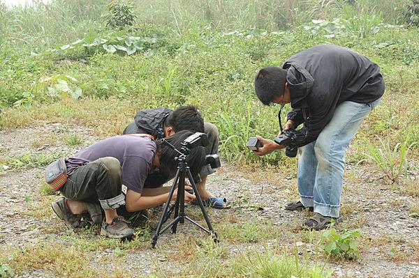 台灣忍者龜正在用心拍照