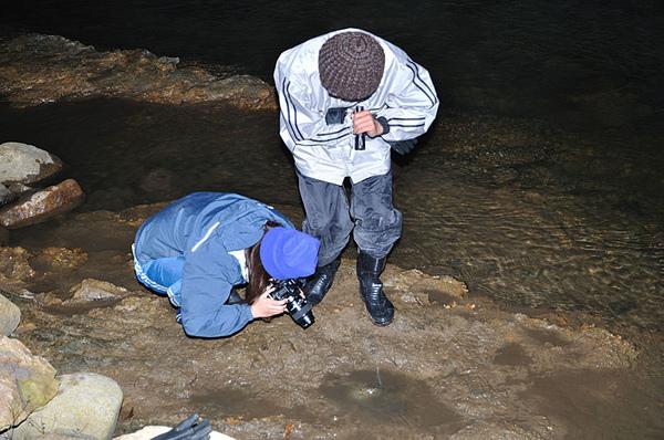 日本石龜拍攝現場