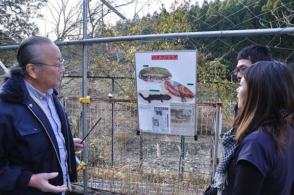 栃本先生正在解說如何分辨中國大鯢以及日本大山椒魚