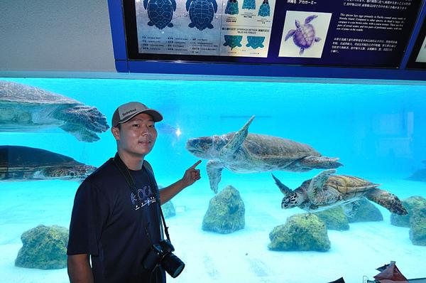 半獸人與海龜